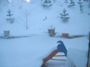 snow_galore