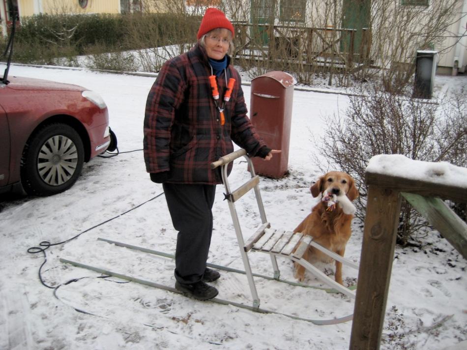 Lady Fi and trusty hound, Oscar