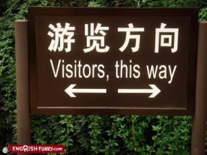 funny-visitors-way