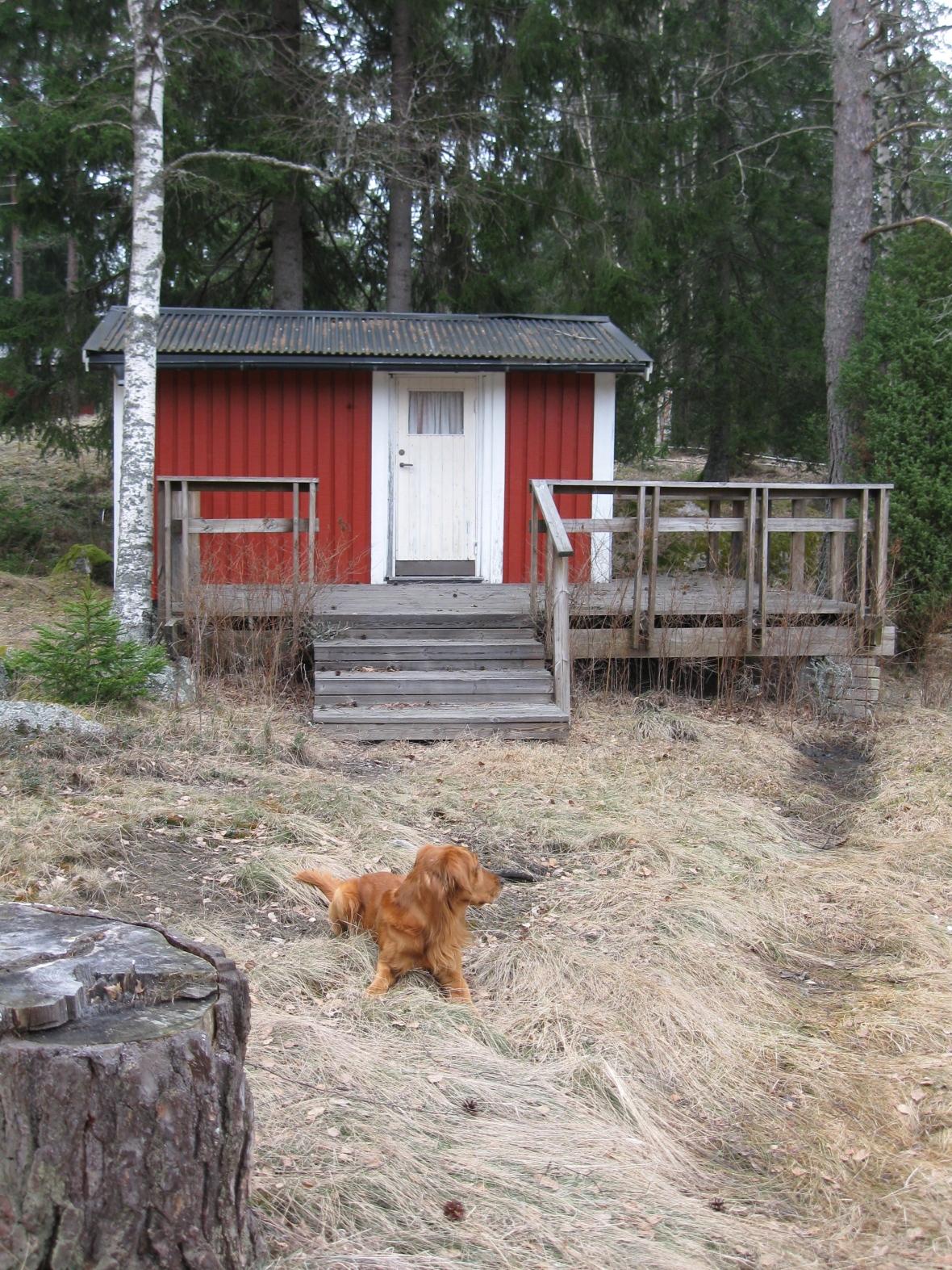guest_cottage