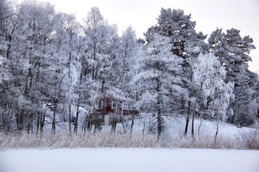 Hoar frost - red house 2