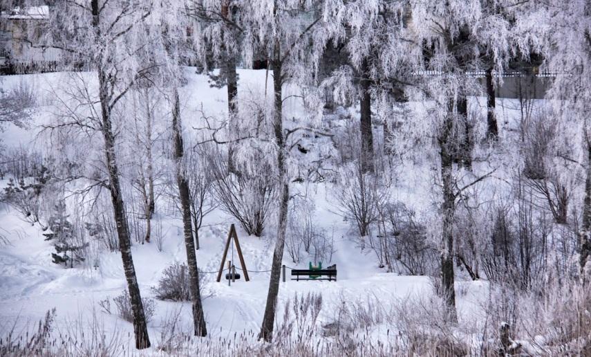 Hoar frost swings