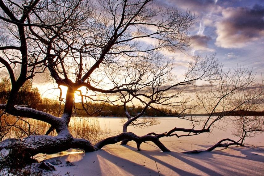 Snowscape 2