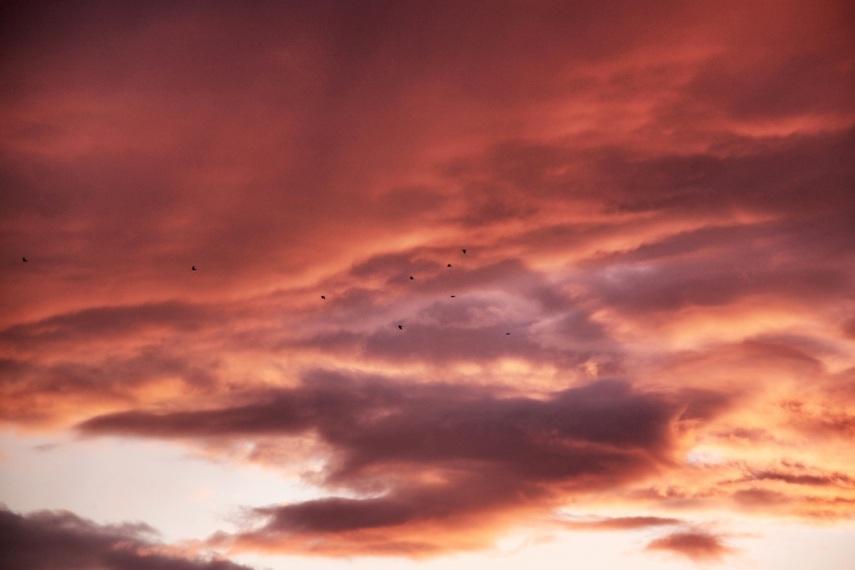 Fire sky copy