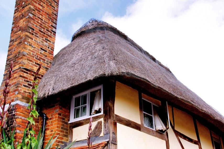 Cottage copy