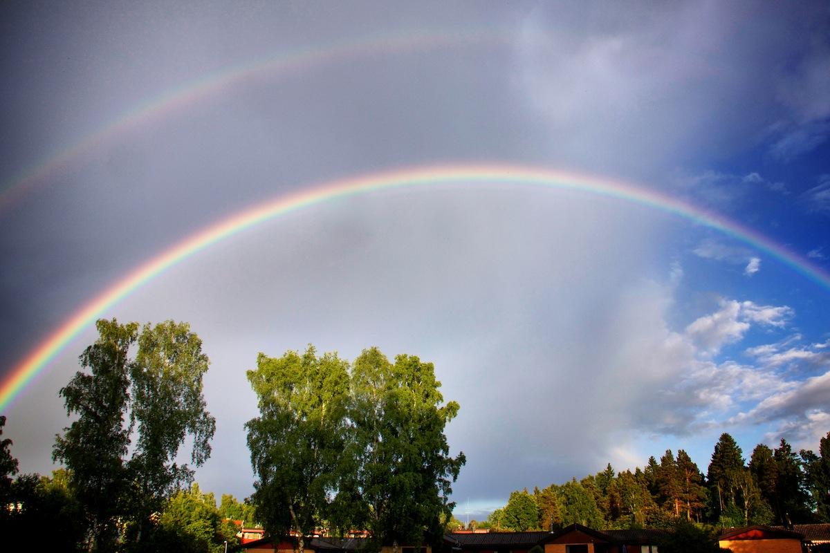 Rainbow joy | Lady Fi