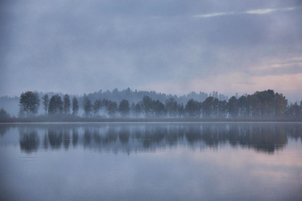 Misty dawn copy