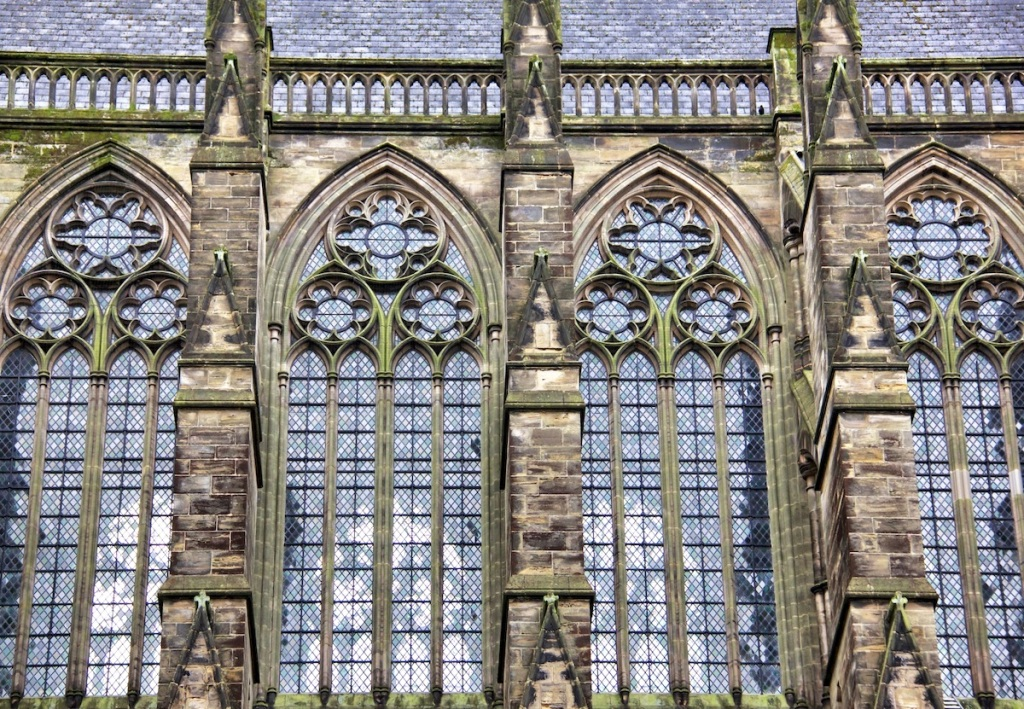Mossy windows