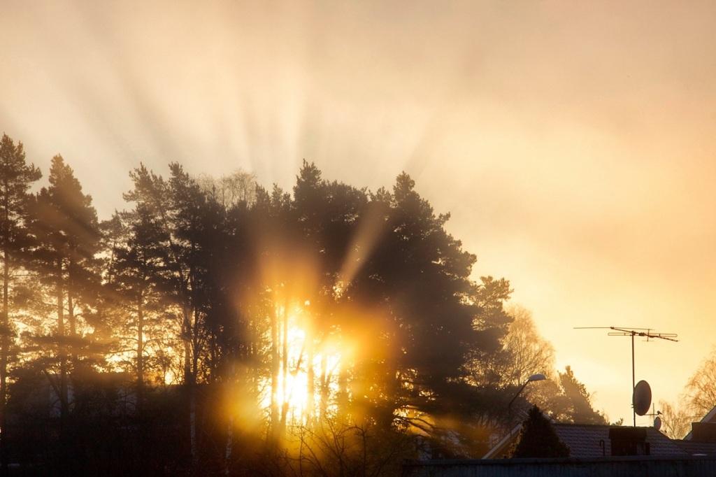 Sunburst 2