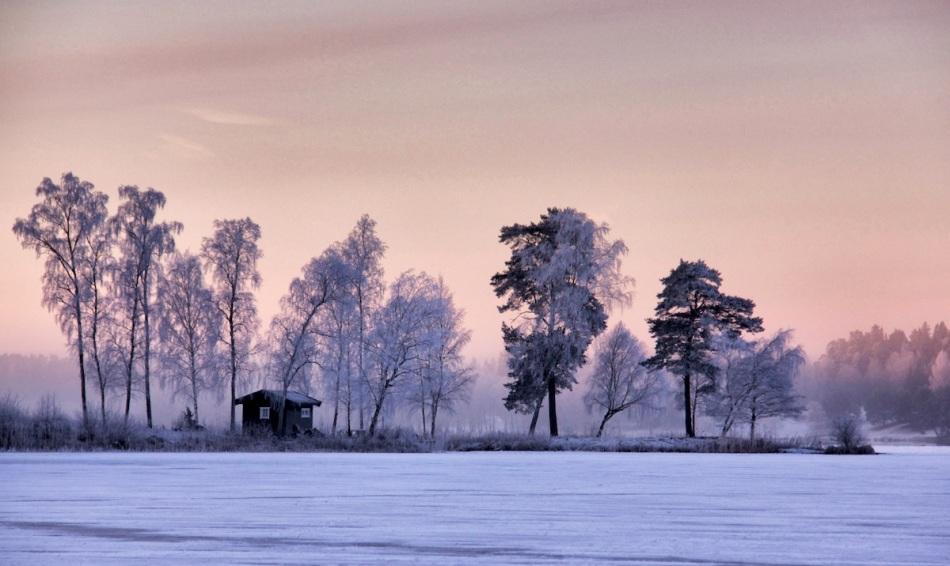 Hoar frost sky