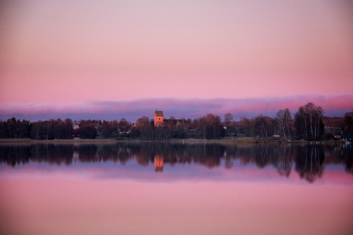 Pink dawn.jpg