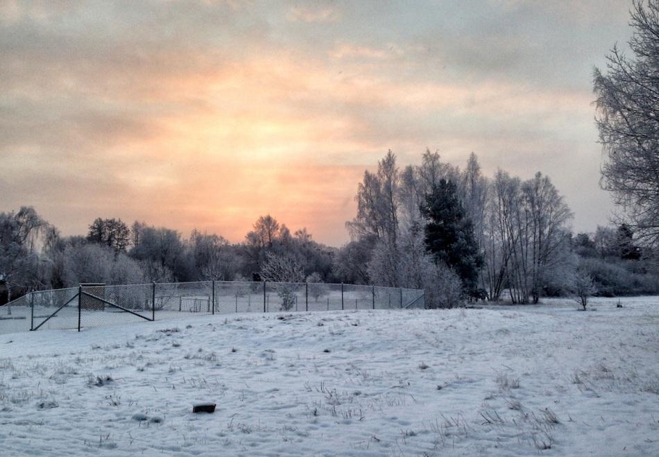 Orange and snow.jpg