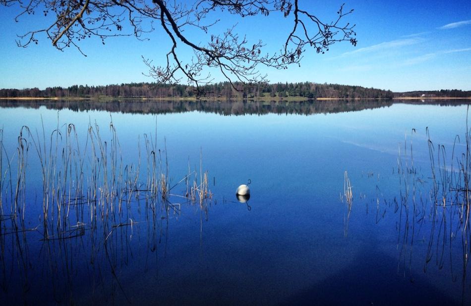 Blue serenity.jpg