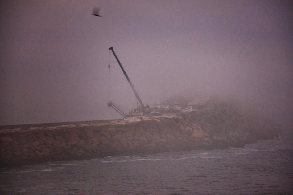 Misty crane.jpg