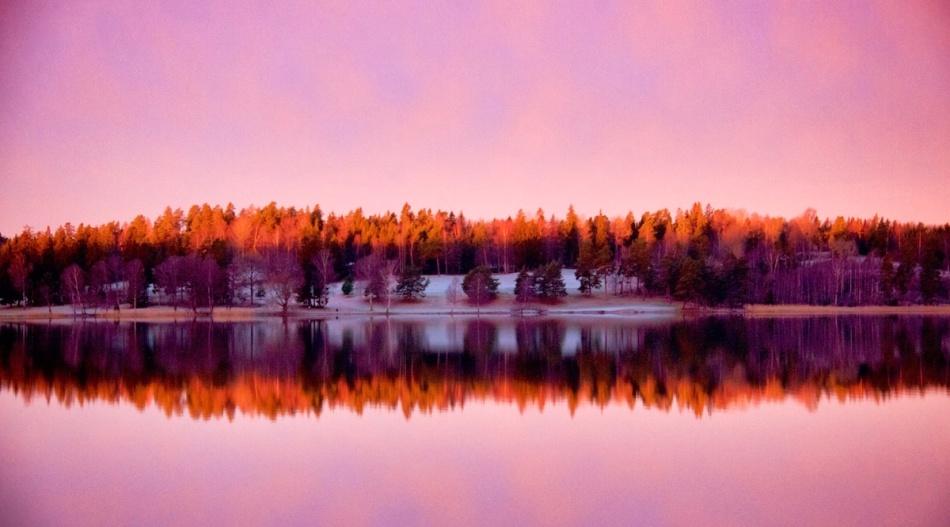 Lilac sunrise.jpg