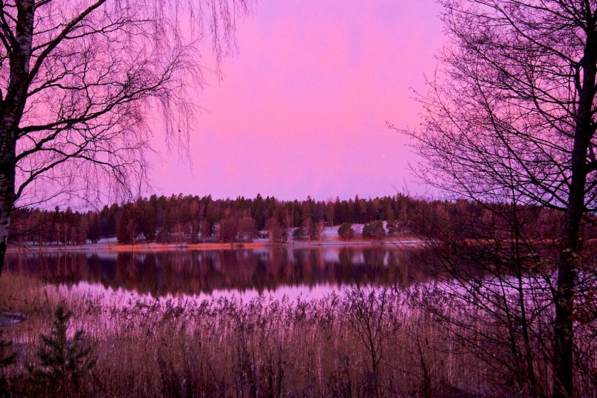 Pink view.jpg