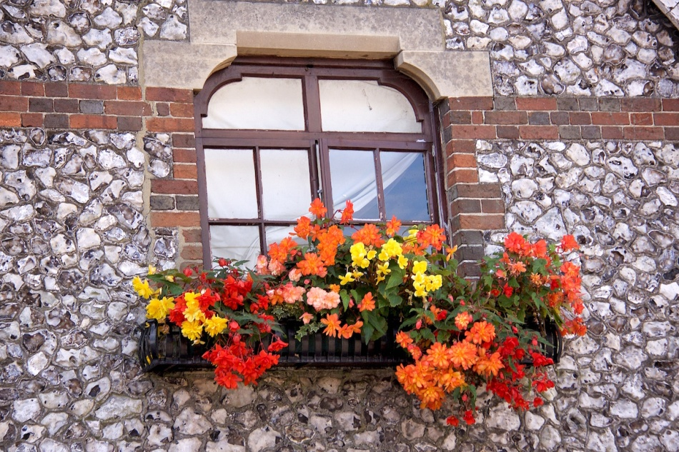 Flowery window.jpg