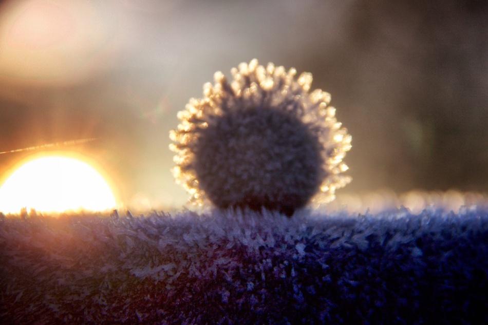 Two suns.jpg