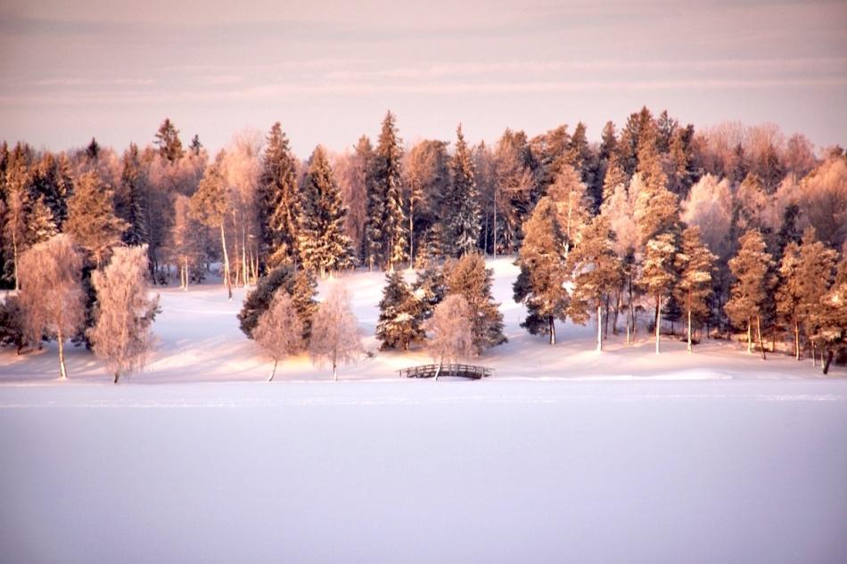 Snowybridge.jpg