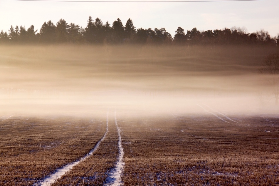 Fog scarf.jpg