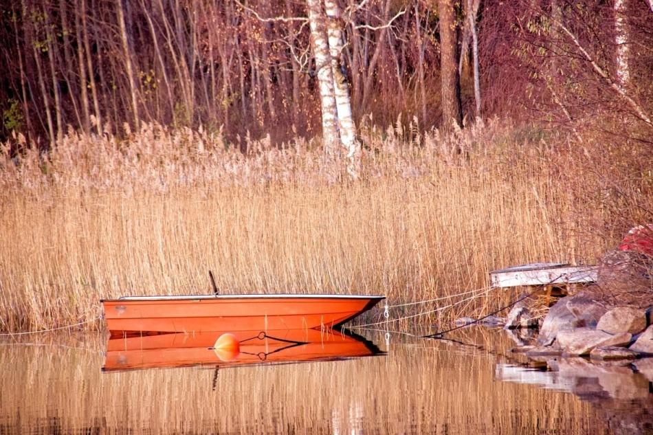 Boat_closeup.jpg