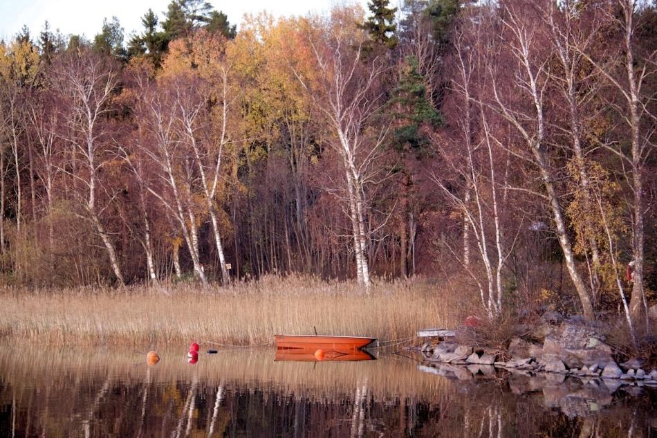 Boat_orange.jpg